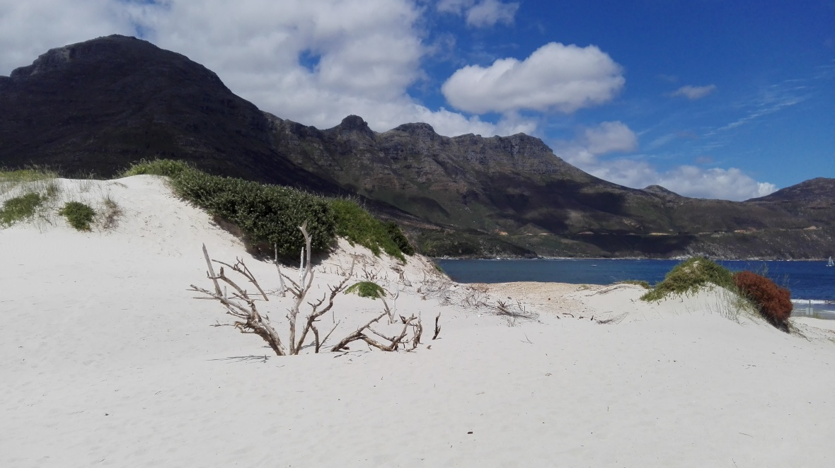 hout-bay-beach
