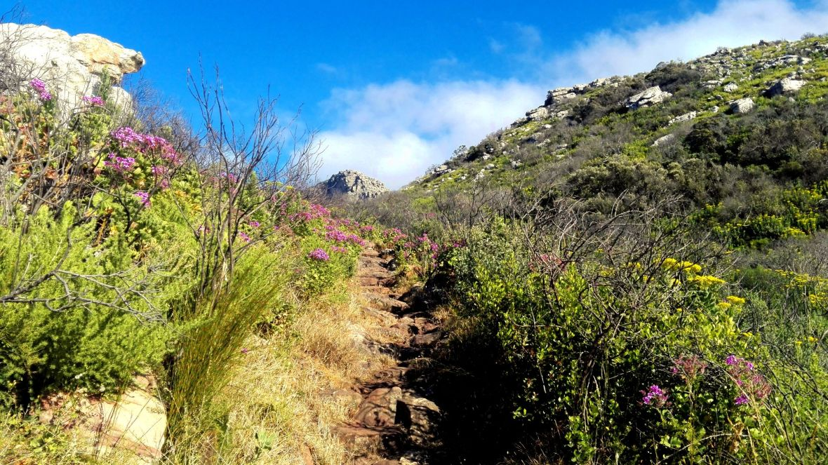 gone-hiking