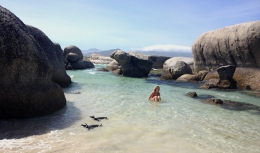 Soft white sand, warm(ish) waters and penguins!!!