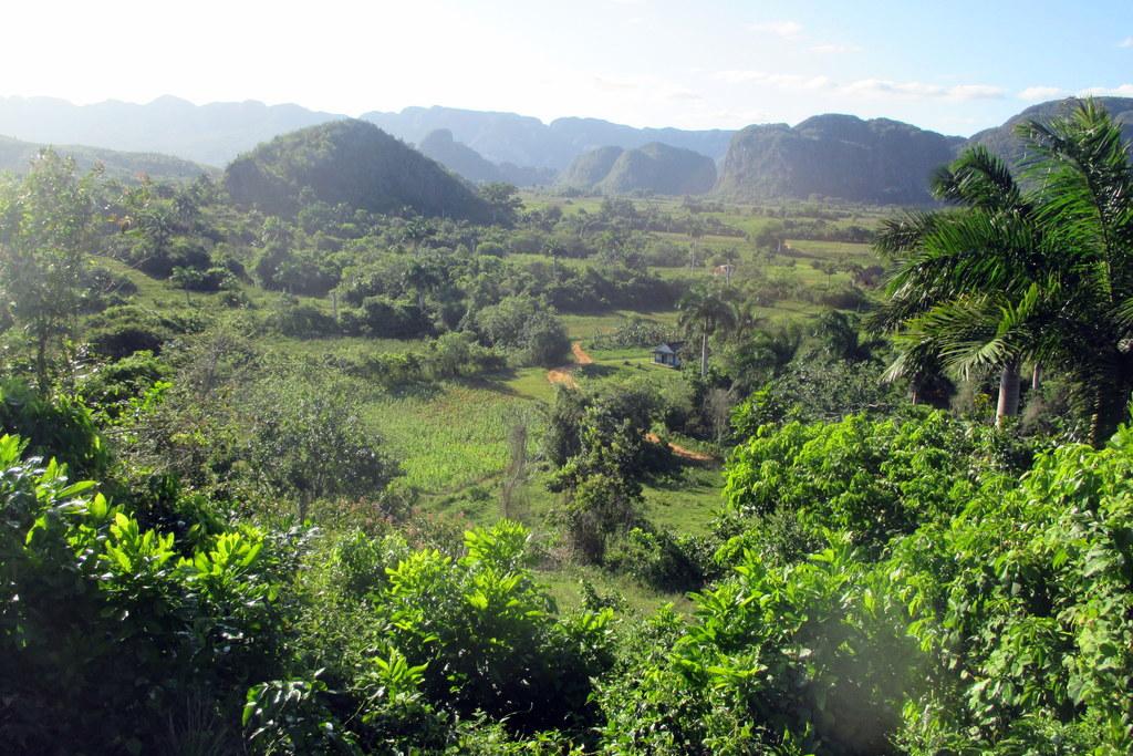 campoverde