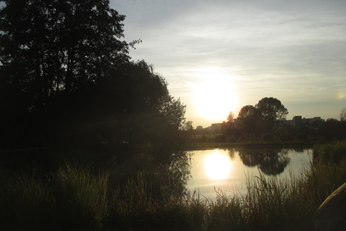 sunset Kienbergpark