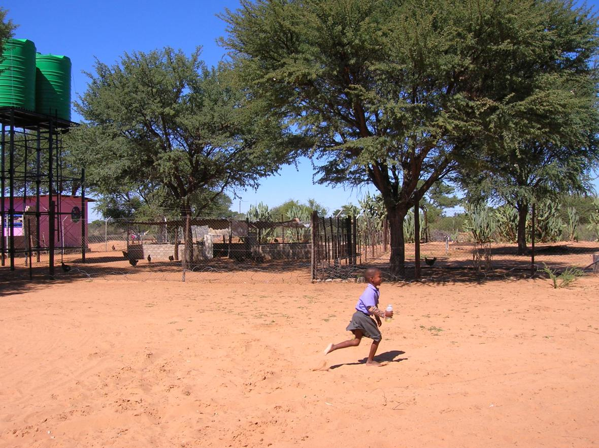 Kalahari soil
