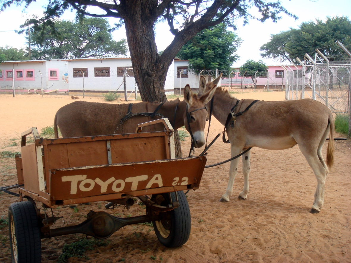 Toyota cart