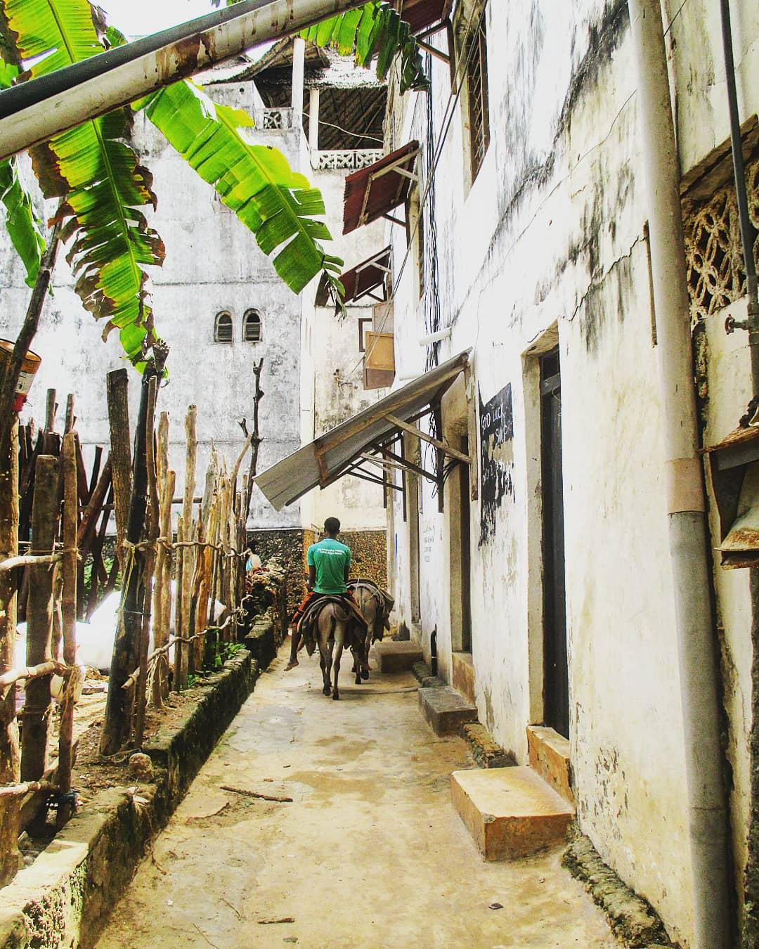 Shela street