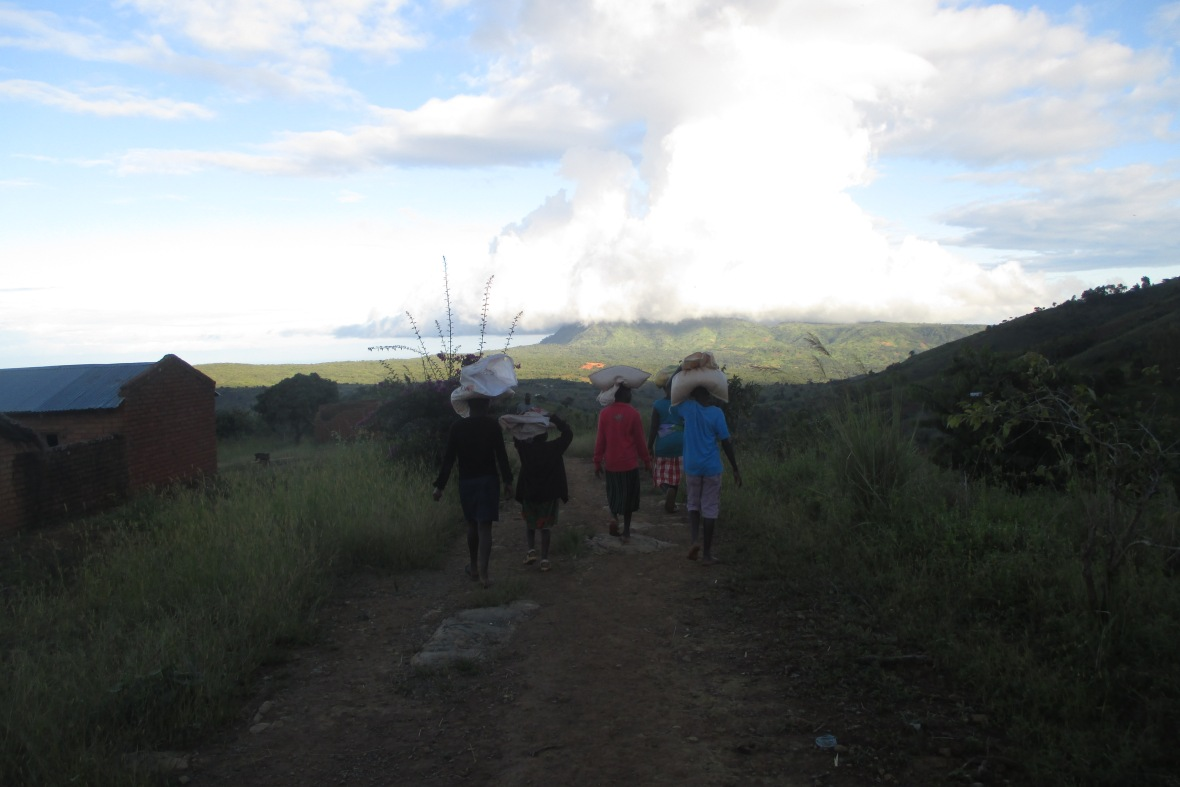 Livingstonia walk